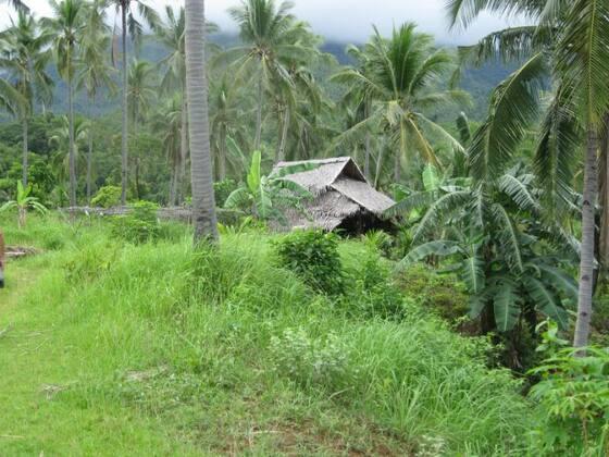 Sibuyan, Philippinen
