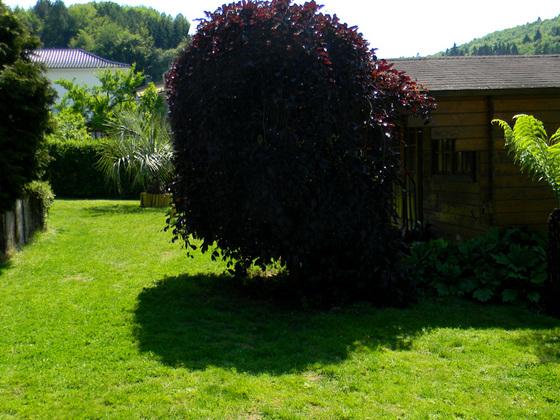 Gartenkontraste